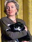 hilary_clinton_cat.jpg
