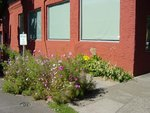1portland_rose_district_011-med.jpg